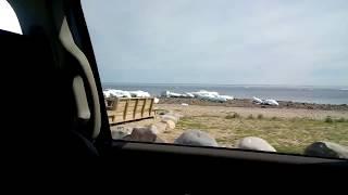 видео Гудзонов залив