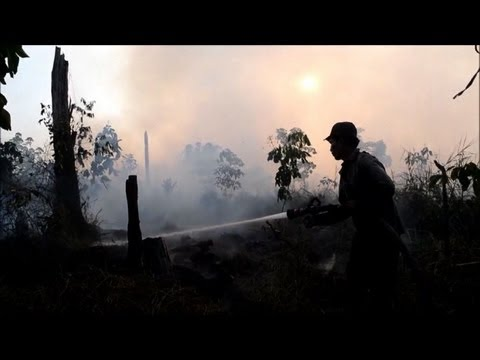 Slash-and-burn a way of life on Indonesia's Sumatra