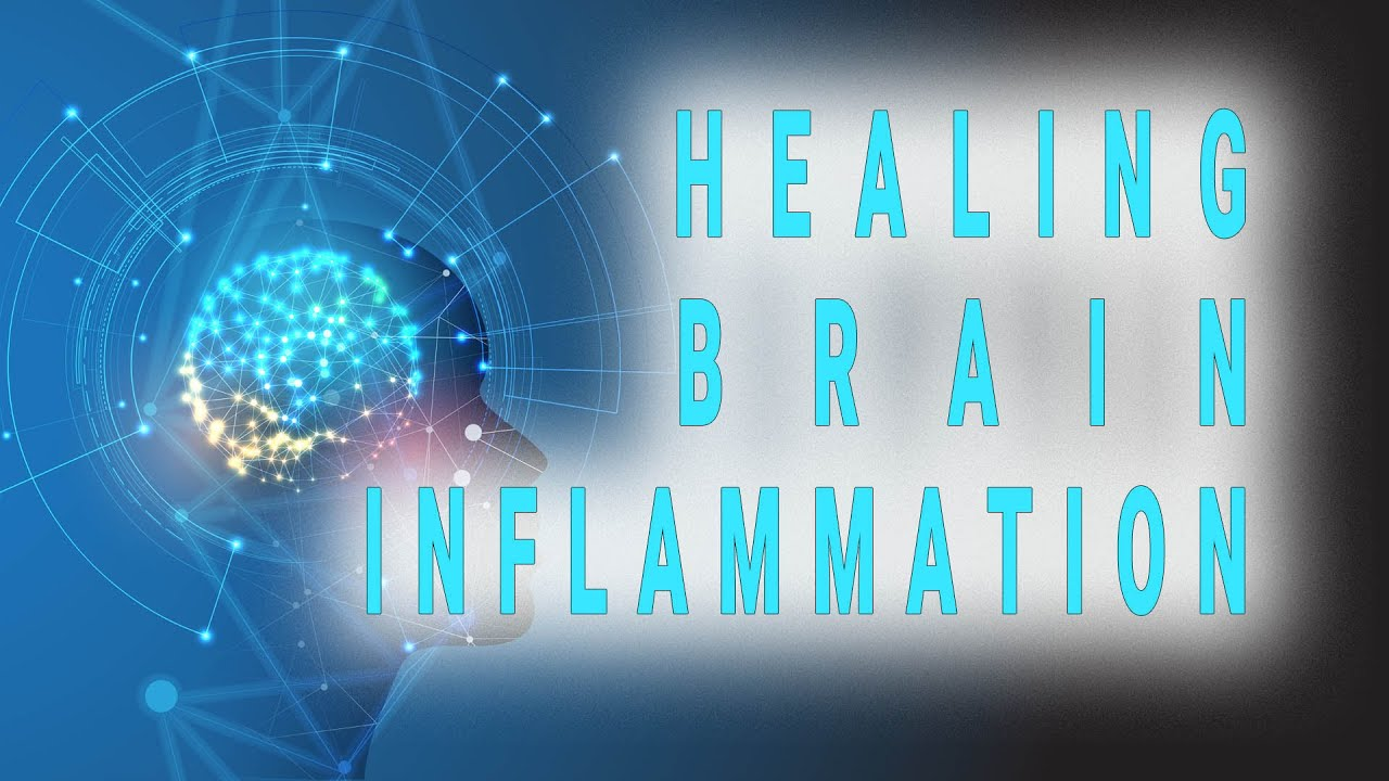 Healing brain inflammation through changing your gut function