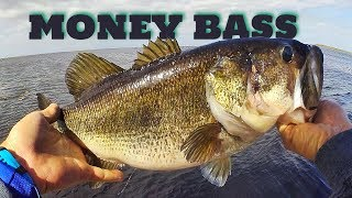 MONEY BASS - Lake Okeechobee - FLW Tour #1