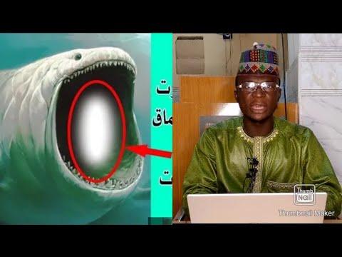 Download Subhanallah ji Yadda Kifi Ta Hadiye Annabi Yunusa...