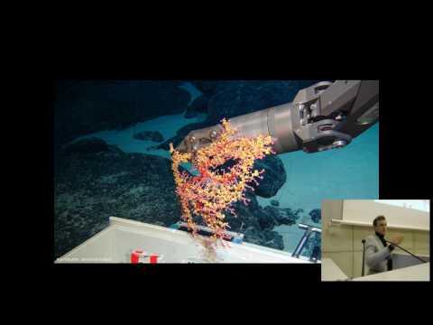 Bart De Smet - The community structure of deep-sea macrofauna in an area of ...