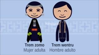 Chumngechi Amulen ta Mongen/ Ciclo de vida Mapuche