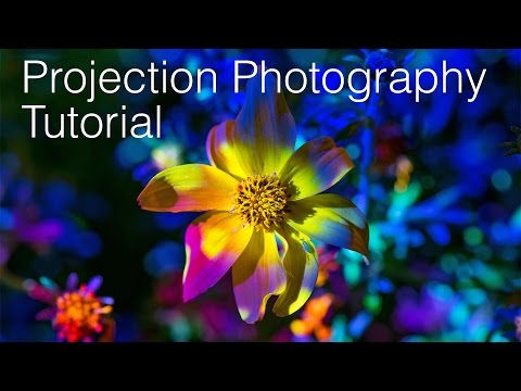 Projection Photography Tutorial + Aaxa M4 / M5 Projector Comparison Review thumbnail
