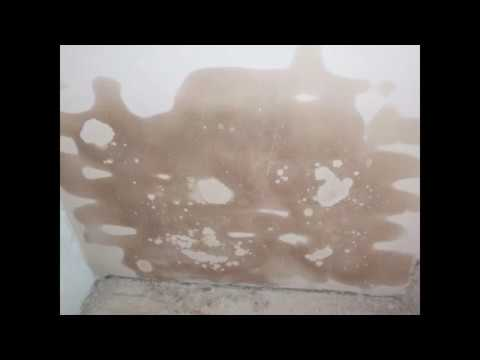 Bevorzugt Salpeter aus einer Mauer entfernen - YouTube FX91