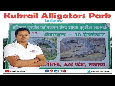 Kukrail Alligators Park Chandanapur Lucknow Uttar Pradesh