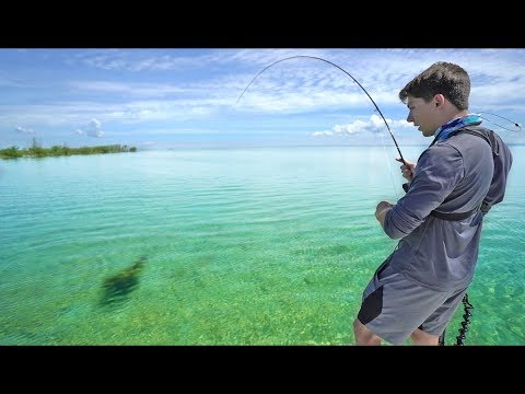 CLEAREST Water I've Ever Fished -- (BIG Fish On Light Rods)