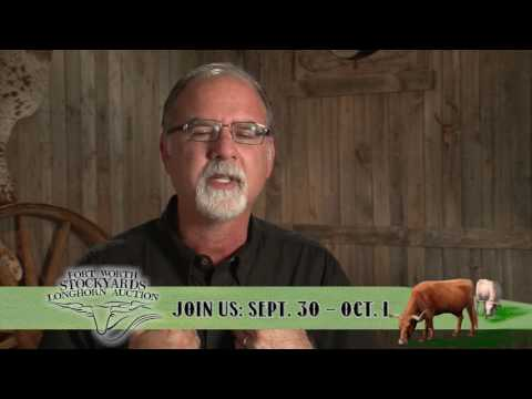 Fort Worth Stockyards Longhorn Auction - Bill Hudson