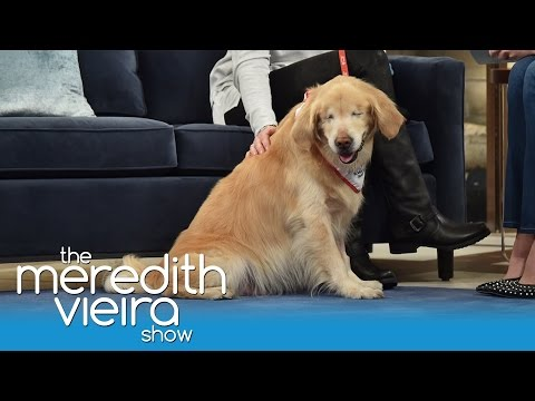 Smiley The Blind Dog! | The Meredith Vieira Show