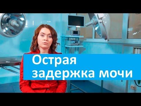 Что делает врач нефролог: какие услуги, процедуры, описание