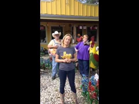 Visit Wimberley, Texas