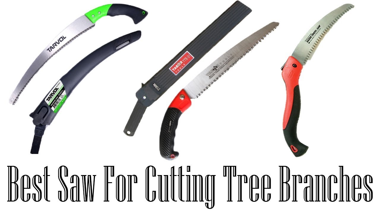 ▻▻Best Saw For Cutting Tree Branches|Best Saw For Cutting Tree ...