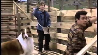 Andre (1994) - Lassie (1994) - Dragonworld (1994) Promo (VHS Capture)