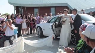 Организация свадьбы от свадебного агентства DAR-wedding Уфа