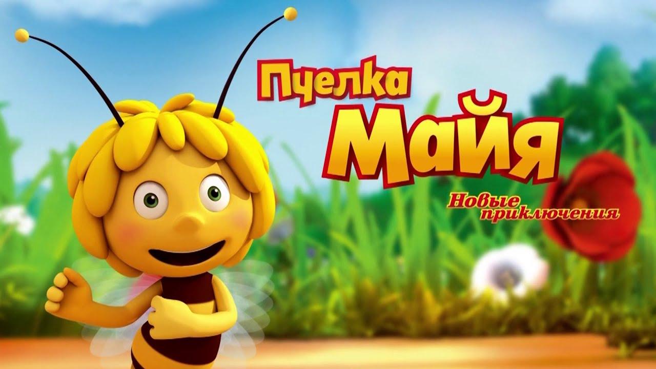 Новые приключения пчелки майи, строение пизды фото и видео