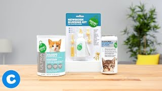 GNC Pets Kitten Nutrition