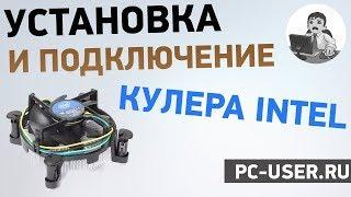 Як встановити кулер на процесор Intel. Детальна інструкція