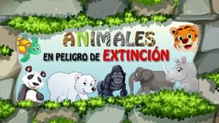 Animales en peligro de extinción - gorila