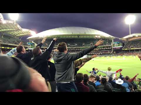 Barmy Army Adelaide Day Night Test 2017 Day 4