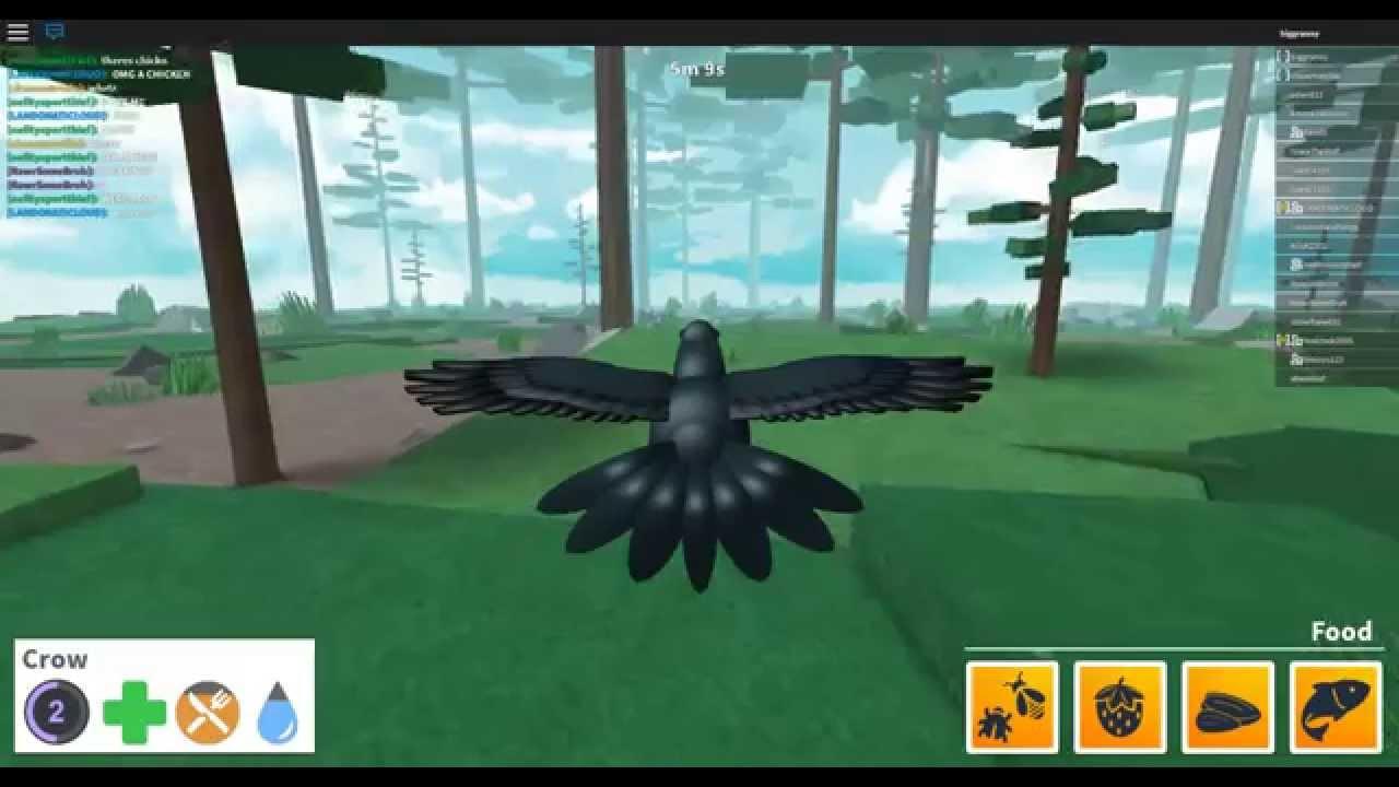 Roblox Bird Simulator Lets Play Ep 1 Starting Out - roblox vids simulators