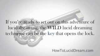 WILD Lucid Dreaming 101
