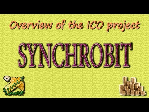 SYNCHROBIT / Overview Of The Company.