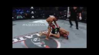 Top 10 MMA Knockouts (New 2013)