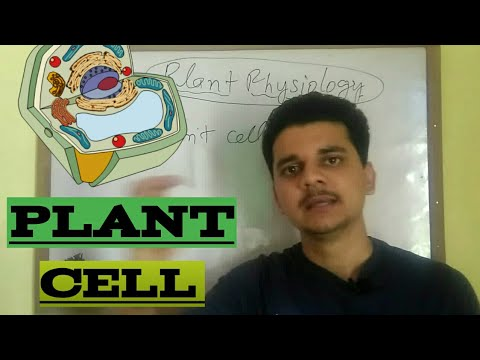 Plant physiology  |Introduction to plant cell