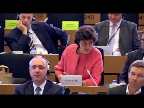 ALDE MEP Sylvie Goulard questions commissioner designate Jonathan Hill (Audio FR)