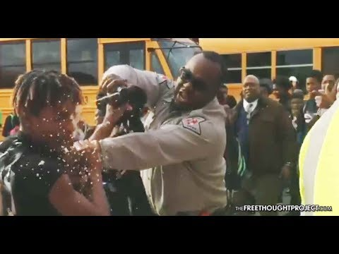 School Cop Pepper Sprays Teen Directly in...
