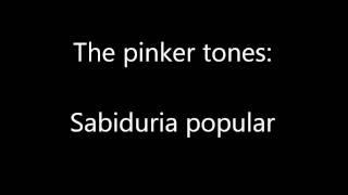 Play Sabiduria Popular