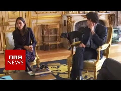 Macron's dog interrupts meeting - BBC News