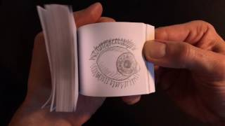 Flipbook Animation - Eyeball