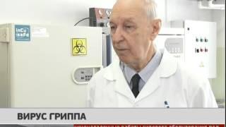 Вирус гриппа. Новости. GuberniaTV
