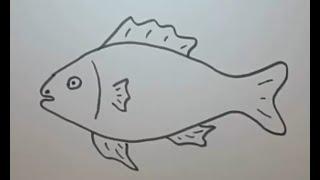 How to draw Fish And Coloring Pages For Kids, Children, Babies . Balık resmi nasıl çizilir . Zayu TV