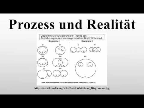 Видео Essay der prozess