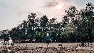 Vlog|新加坡X參訪:所有生態景點都在這惹 💝