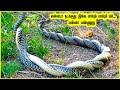 கேமராவில் சிக்கிய 8 மர்மமான சம்பவ இடங்கள் | Interesting Places