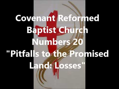 "Numbers 20, ""Pitfalls to the Promised Land: Losses"""