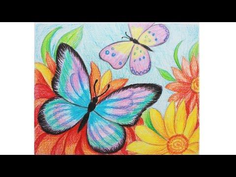 Виды бабочек/Бабочки на цветах фото