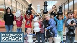 Faszination Schach | Schach für Kinder und Jugendliche im Shopping Cité in Baden-Baden