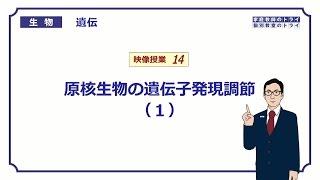 【高校生物】 遺伝14 原核生物の遺伝子発現調節(1)(14分)
