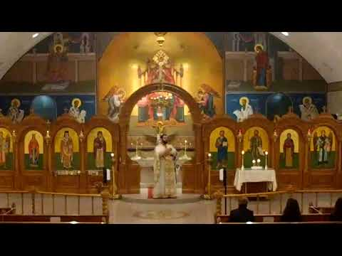 Saint Artemios And Saint Gerasimos Services St. Nectarios Greek Orthodox Church Palatine, IL