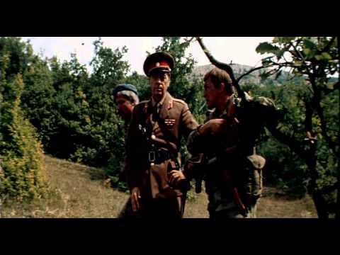 Ответный ход (1981)