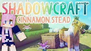 Cinnamon Stead | Shadowcraft 2.0 | Ep.13