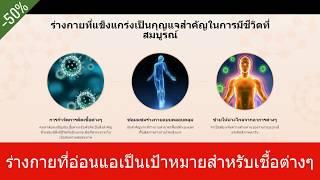 Mikocin - รีวิว-การกำจัดการติดเชื้อต่างๆ Lazada, Pantip, Thailand, ภูมิคุ้มกัน