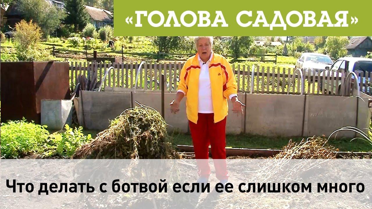 Шендерович объяснил, почему у россиян руки не из того места растут