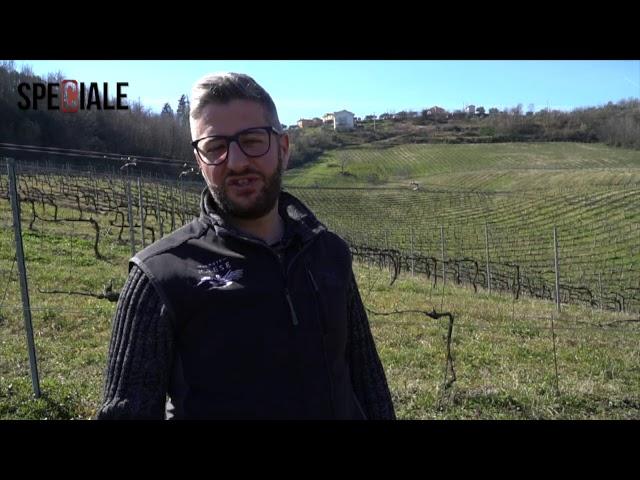 SPECIALE AZIENDA AGRICOLA TENUTE PAESE