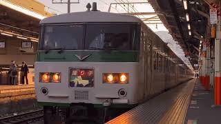 185系特急踊り子号引退記念 海が似合う特急列車