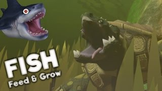 THE BIGGEST TURTLE IN THE SWAMP | Feed and Grow Fish Gameplay EPISODE 3